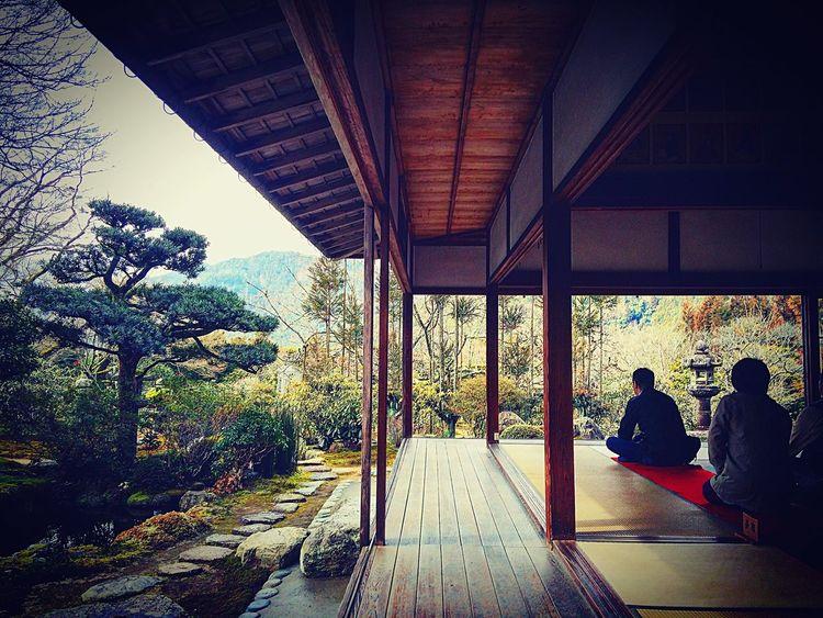 実光院 客殿 大原 京都 Kyoto Relaxing 寺社仏閣 庭園
