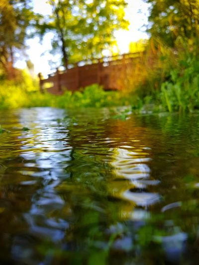 Imperfection Reflection Reflections In The Water Underwater Bridge Nature 43Golden Moments Color Of Life Pivotal Ideas Color Palette