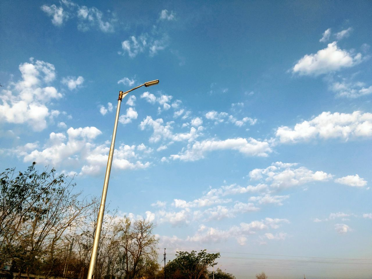 sky, cloud - sky, low angle view, plant, nature, day, tree, no people, lighting equipment, street light, outdoors, street, scenics - nature, beauty in nature, tranquil scene, tranquility, flying, sunlight, environment, land