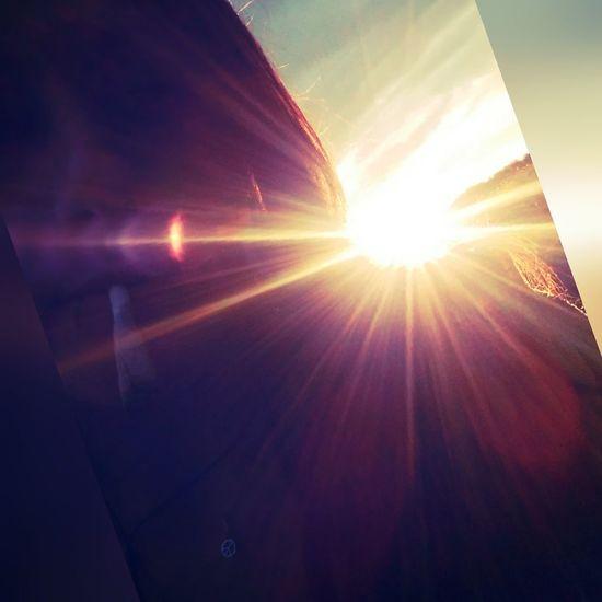 Light up Close-up Day Outdoors Scenics Inner Peace Iriedaily Weedlove Weedstagram420 Lifestyles Stonerlife Ganja Farmer OneLove Noworries✌ Lovelife Ganja Love Summer Vibes Goodvibes✌️ Sunlight Sunsetlover Sunbeam