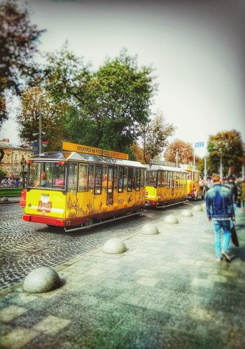 Day People Ukraine 💙💛 Tree Tram Yellow Color Paint The Town Yellow