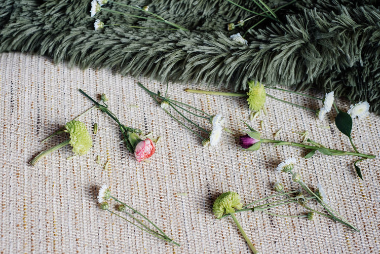 High angle view of flowers and plants on textile