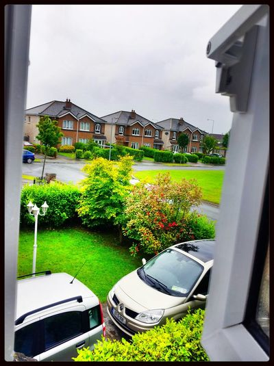 raining day Outside_my_window