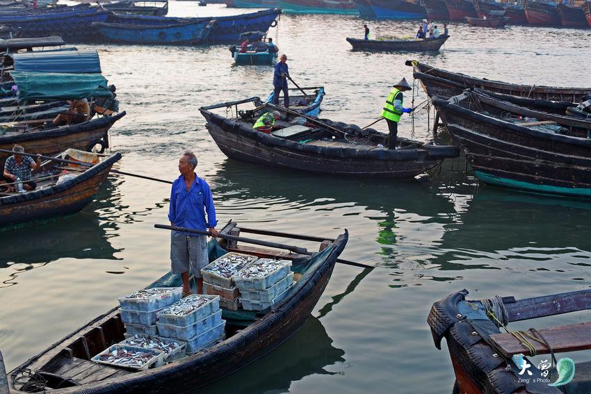 Back to Beihai from fishing Beihai Guangxi Guangxi China Fish Harbour Fish Harvesting Fisherman Sea Fish Sea Life
