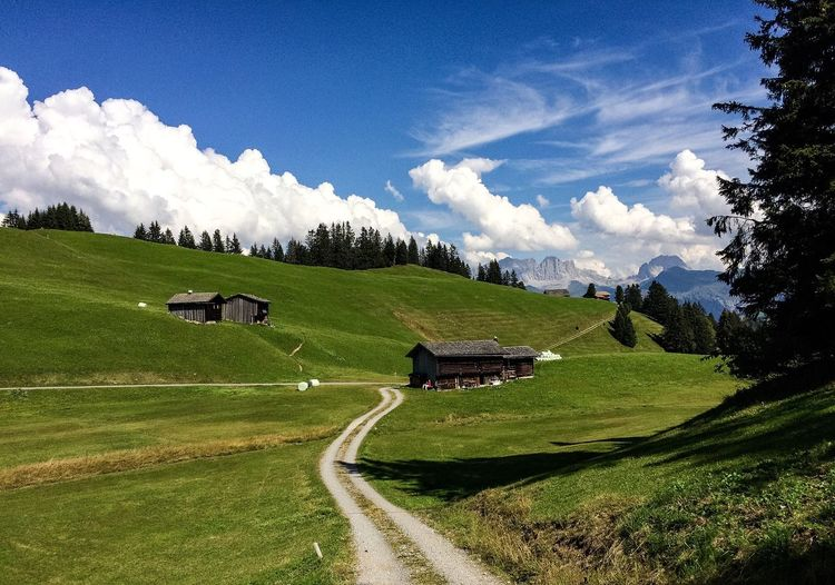 Switzerland Farming Farm Hiking Wanderlust Mountains Plant Tree Sky Landscape Cloud - Sky Grass Scenics - Nature Beauty In Nature Field Land No People Nature Green Color