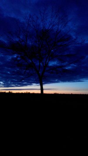 Nature Biutiful Walking Around Sky my favorite sunset
