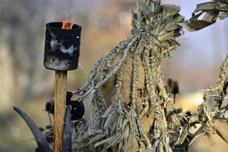 Close-up of person in costume with fire