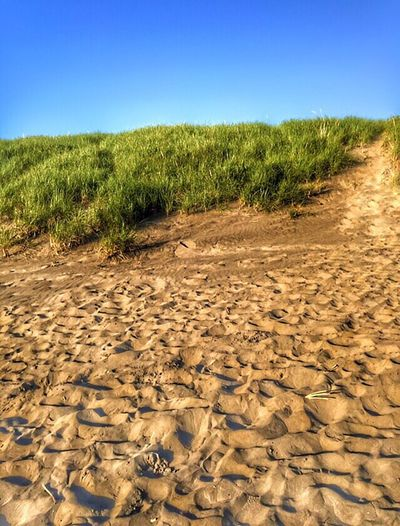 Beach Photography Views Perspective EyeEm Exploring Beach Abstractions Beachphotography Sand Oregon Coast On The Beach Scenic Nature Patterns In Nature Shapes In Nature  Nature Photography Landscape Photography Landscape #Nature #photography HDR Landscape Out Of Sand HDR Collection
