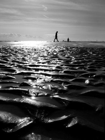 Beach Crosby