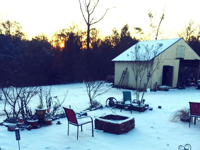 Alabama Winter Snow Southern Sunrise Woods Countryside Alabama Sunrise Southern Snow ❄ Shades Of Winter Winter Snow Cold Temperature Weather Outdoors Day No People Nature Sky