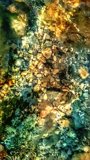 under water Nature nature_collection Nature photography Nature On Y Pebbles And Stones Pebbles Pebbles And Water Pebble Texture Nature Nature_collection Nature Photography Natural Beauty Waterfront Water_collection Water Reflection Autumn Waterfront Leaf Rippled Floating On Water Nature Lake Outdoors High Angle View Day No People Beauty In Nature Tranquility Shallow Standing Water Swimming Pool Water Surface Change EyeEmNewHere Colour Your Horizn