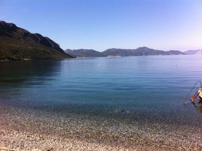 Good afternoon everyone Enjoying The Sun Being A Beach Bum Sea Relaxing Swimming