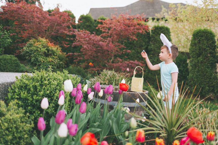 Side view of cute boy wearing costume rabbit ears while playing in garden