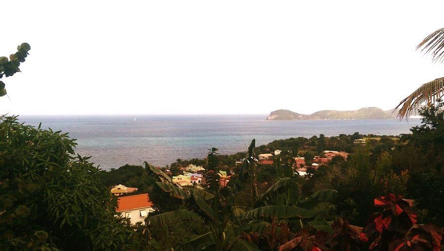 Guadeloupe Island Seascape Terre De Bas Blue Sky Happiness Amazing Place