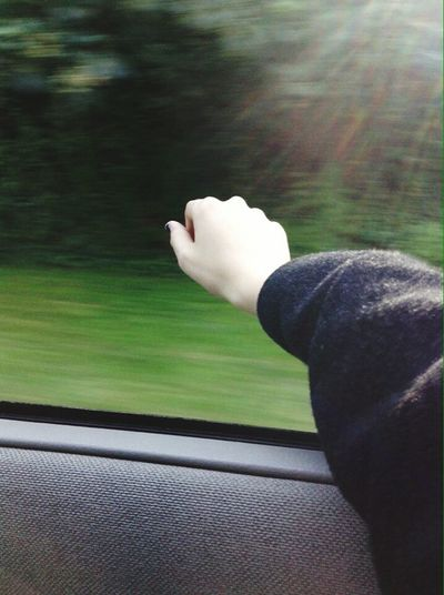 I like to ride the car and photograph what i see it gives me pleasure ! One Person Day Nature One Young Woman Only One Woman Only My Hands