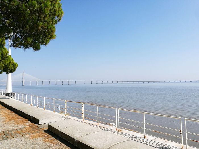 Ponte Vasco Da Gama Lisboa Tajo River Trianeando EyeEmNewHere Water Clear Sky Sea Beach Blue Summer Politics And Government Railing Tree Sky