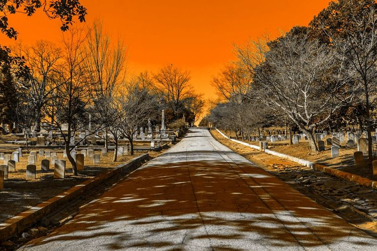 Oakland Cemetery, Firey Sky Absence Bench Change Cold Cold Temperature Composition Day Diminishing Perspective Empty Footpath Long My Best Photo 2015 Outdoors Perspective Rail Transportation Railroad Track The Way Forward Transportation Tree Vanishing Point Walkway Winter