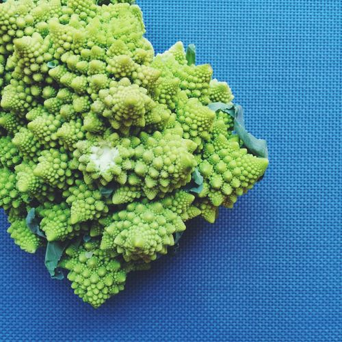 Directly Above View Of Romanesco Broccoli On Blue Textured Platform