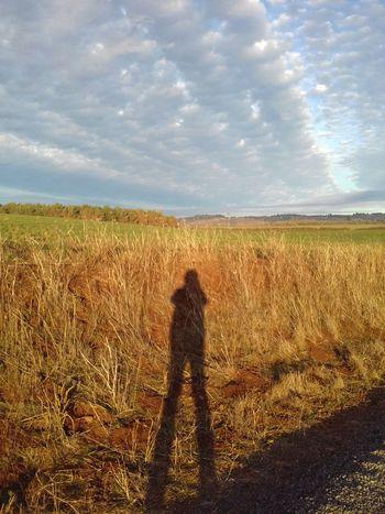 Sky Agriculture Beauty In Nature Rural Scene Cloud - Sky Silhouette Scenics Field