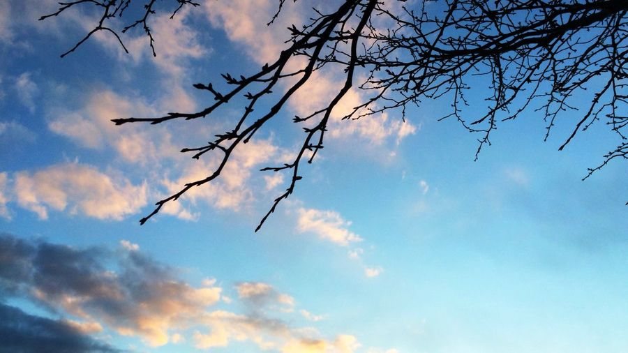 今日の空 First Eyeem Photo Sky Blue Autumn Japan Hokkaido Sapporo