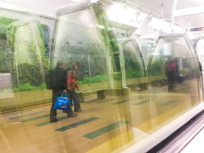 Transparent Glass - Material Window Real People Reflection Adult People View From Train View From Train Window Public Transportation Train View Travel Railroad Station Passenger Train View From The Window... Day