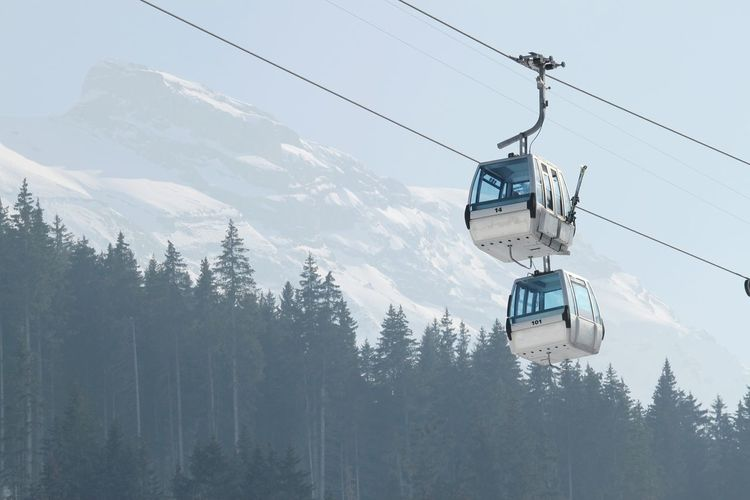 Winter Snow Cold Temperature Transportation Overhead Cable Car Adelboden Schweiz Schweiz 🇨🇭, Switzerland Bernese Oberland Mountain