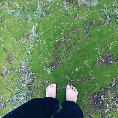 Go back. . . . Traveling Travel Nature Grass Green Mos Phototime Ig_masterpiece Igoftheday Jj_editors NiceShot Hotshotz Exclusive_shot