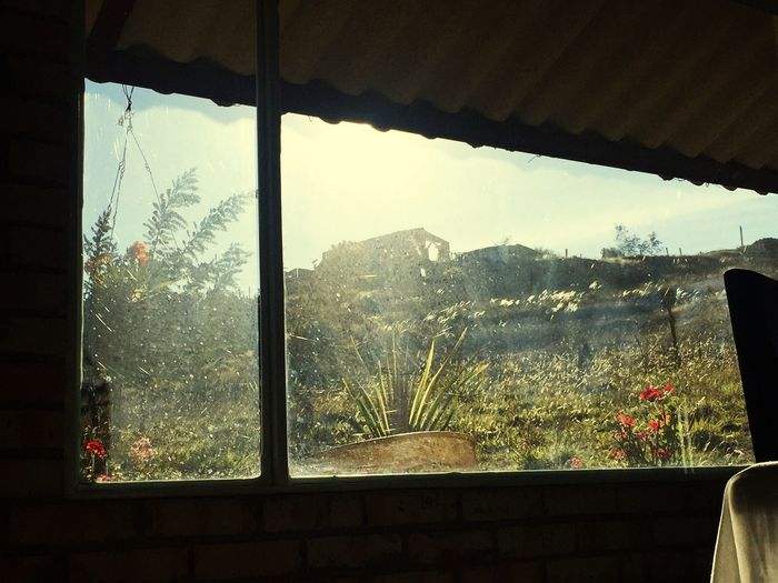 Desde mi ventana Window Mountain Day Indoors  Looking Through Window Nature No People Sky