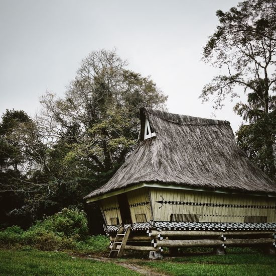 Ancient Building Architecture ASIA Day Forest House Hut INDONESIA Lake Toba Painted Houses Sumatra  Traditional Building Traditional Village