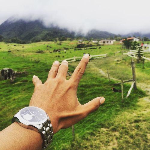 Quality Times Daniuttu Sabah