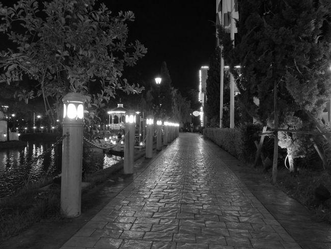 Night The Way Forward Walk Way
