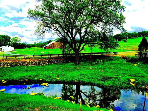 Water_collection Water Reflections River Reflection Sky And Clouds Check This Out Hugging A Tree Nature Trail Taking Photos Popular Photos