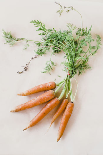 Backgrounds Bio Carrots Close-up Day Diet Dietfood Food Food And Drink Freshness Healthy Eating Healthy Food High Angle View Indoors  Nature No People Raw Food White Background