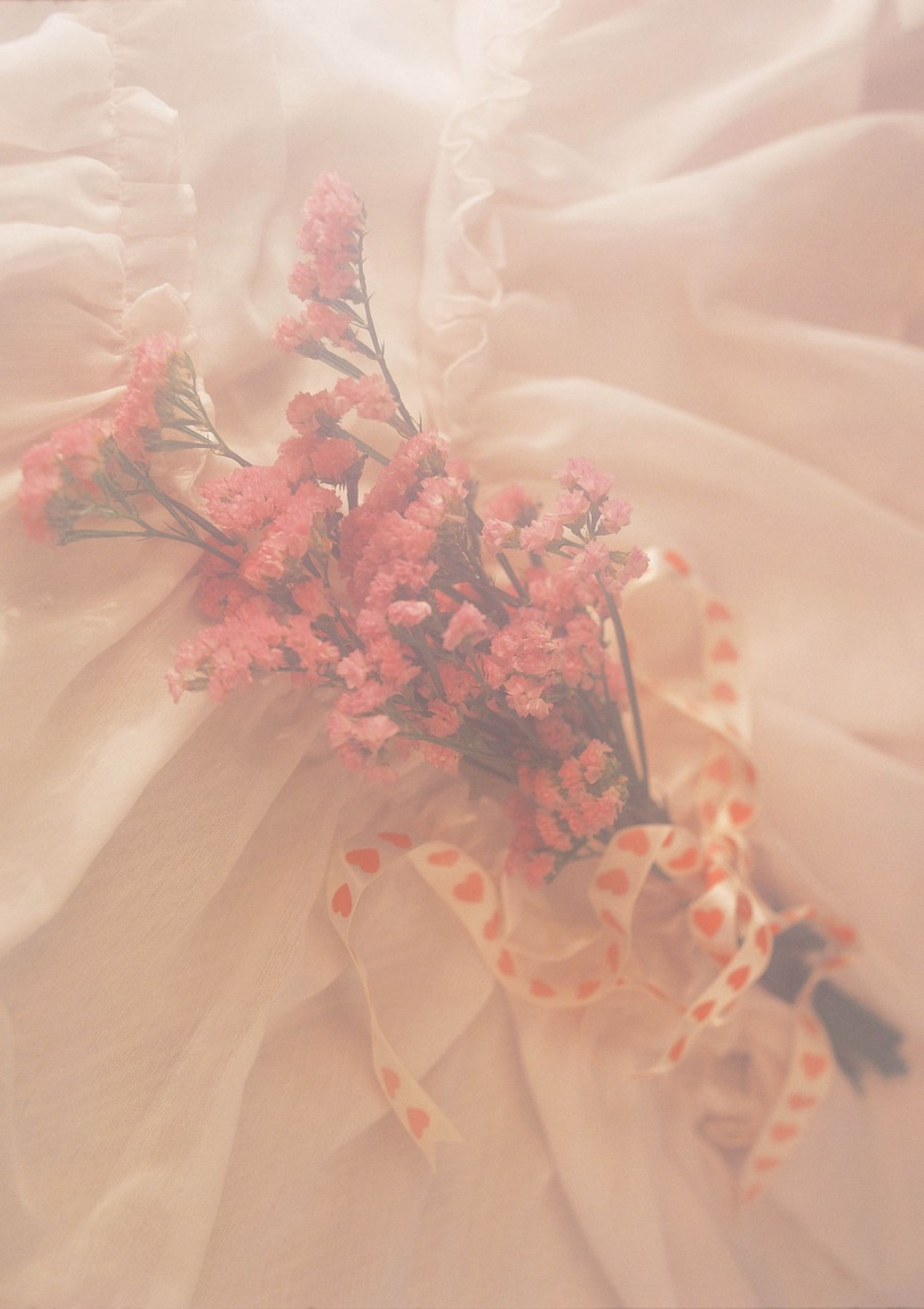 flower, petal, fragility, freshness, flower head, beauty in nature, pink color, close-up, nature, growth, plant, blooming, sunlight, indoors, no people, pink, single flower, day, high angle view, pollen