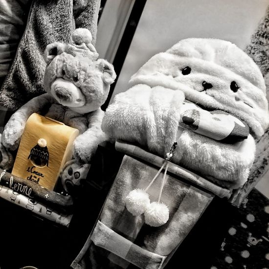 Stuffed Toy Teddy Bear Bird No People Cage Indoors  Animal Themes Close-up Day Doudou ❤ Cooconing Douceur De Vivre Winter_collection Choice Habits Vitrine Eyeemphoto Peluche Canonphotography Bnw_captures Bnw_collection Bnwphotography Bnw_shot EyeEmbnw Noir Et Blanc
