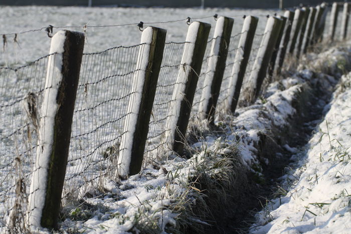 Snow in the winter, sticky on the piles Grass Lines Snow ❄ Winter Winter Landscape Winterscapes Wintertime Close-up Cold Temperature Day Lines And Shapes Nature No People Outdoors Piles Of Snow Piles Of Wood Snow Snowing Winter Winter Wonderland Wood - Material
