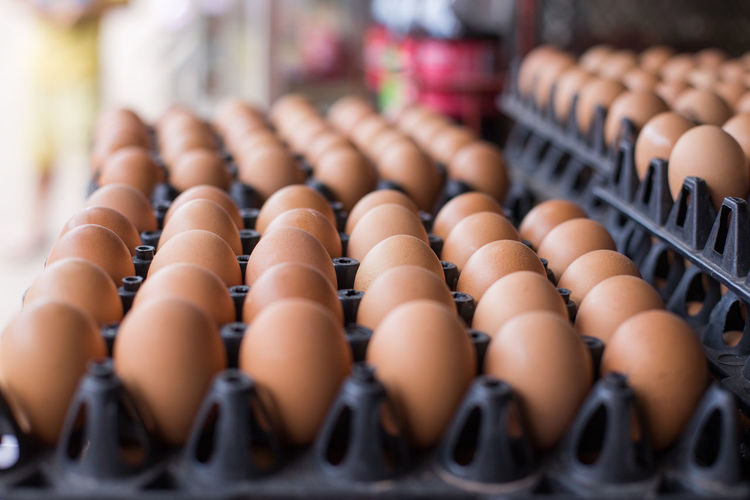 Close-up of eggs in cartoon at shop for sale