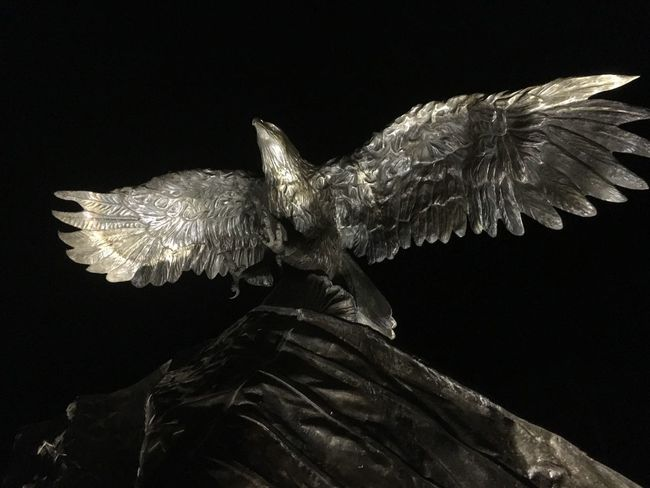Blackhawk Memorial Bird Spread Wings Bird Of Prey Animal Themes Bronze Sculpture Military Helicopter Blackhawk Memorial Navarre Florida Memorial Sculpture Night Photography Flying One Animal Animals In The Wild Animal Wildlife Eagle - Bird Black Background No People Outdoors Bald Eagle