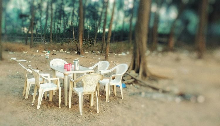 Everything In Its Place Dinning By The Sea Shore The Essence Of Purity And Beauty Indian Simplicity Special Moment .