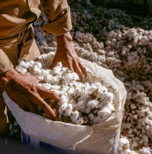 Mid section of man working in cotton industry