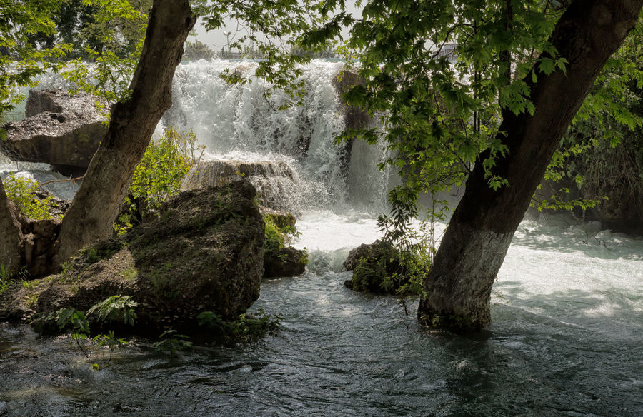 Tarsus Waterfall Beauty In Nature Boulders Flowing Water Greenery Gushing Water Motion Nature Outdoors River Rushing Water Scenics Shrubs Tarsus Tarsus Şelalesi Tarsus, Turkey, Waterfall, South, Tranquil Scene Tranquility Travel Destinations Trees Turkey Water Waterfall White Water