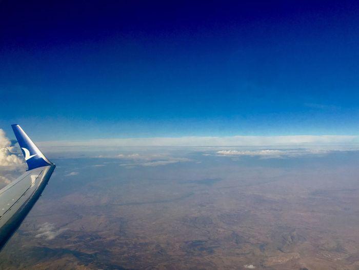 Fly Sky Blue