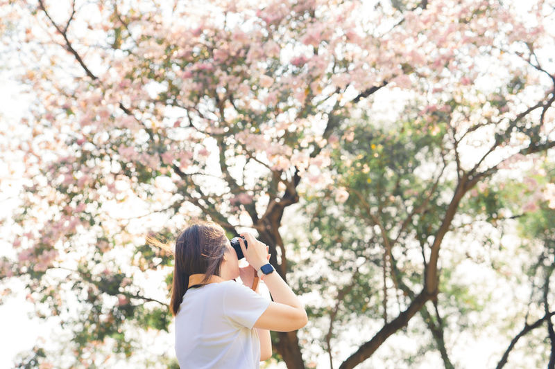 Low angle view of woman standing on pink cherry blossom tree