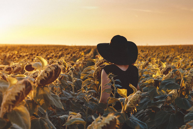 Woman in sunflower field during sunset