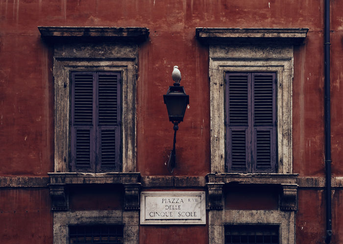 A bird is sitting on a lamp between two windows of an old House in Rome Italia Roma Rome Ancient Architecture Architecture Bird Building Building Exterior Built Structure Closed Day Electric Lamp Entrance Lazio Lighting Equipment No People Old Outdoors Street Light Streetsign Text Wall - Building Feature Window Wood - Material