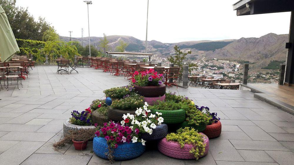Flower Plant Table Outdoors No People Teras Yuksekte Tepeden Amasyagüzeldir Alikaya Amasya Manzarası Amasyaturkey Restorant Restaurant Who What Where Cicekler Cicekler🌹🌺🌷 Lastik Dekorasyon Dekor Bahce Tasarım Dizayn