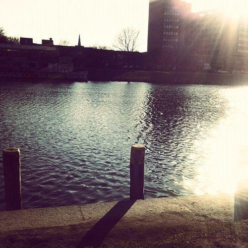 Sunday's walk w/ bunz & smaracuja