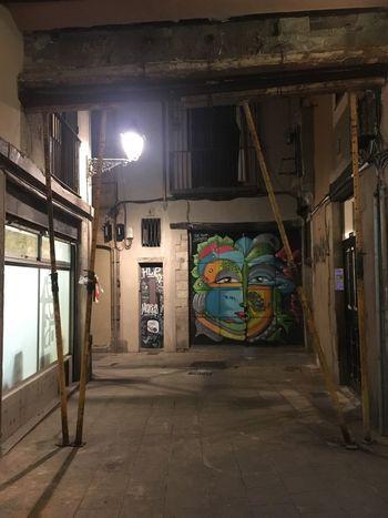 SPAIN Architecture Illuminated Graffiti Built Structure Night Building Exterior Catalunya Barcelona City Gothic Quarter Gothic Street Art Art Walking Tour History