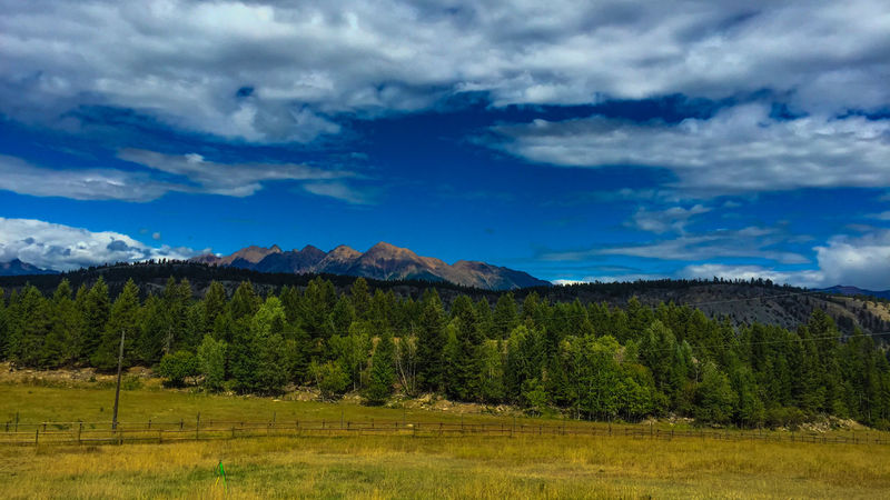 Peaceful day in Cranbrook, BC Field Mountain View Beauty In Nature Blue Sky Cloud - Sky Clouds And Sky Countryside Day Forrest Grass Landscape Mountain Mountain Range Nature No People Outdoors Scenics Sky Tranquil Scene Tranquility Tree First Eyeem Photo