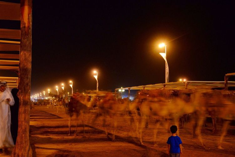 I didn't notice the boy standing in front of the camels until after I look at the photo Looking At Things Four Legs And A Tail EyeEm Best Shots - Long Exposure